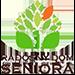 Radosny Dom Seniora Logo